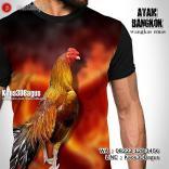 Kaos AYAM ADUAN, Kaos3D, Ayam Bangkok, WANGKAS EMAS, Kaos Gambar Ayam Emas